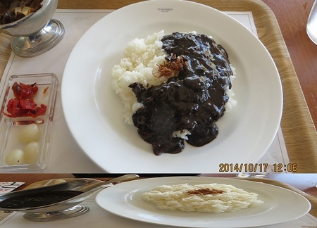 blackcurry201410.jpg
